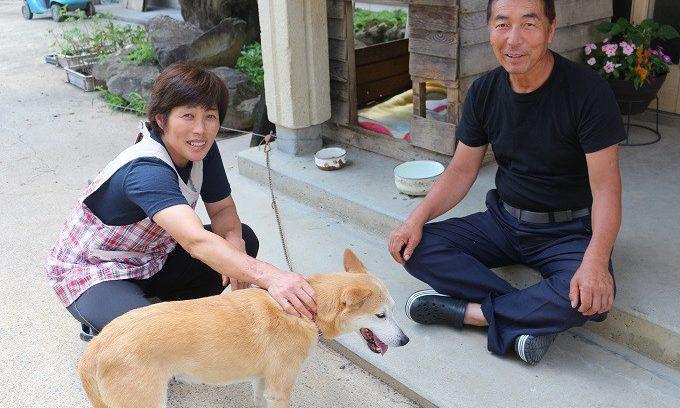 07月19日(水)  犬のうるるんちゃん