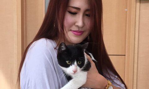 05月03日(水)  けんちゃん (個人保護猫)